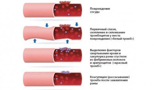 Действие препарата при кровотечении