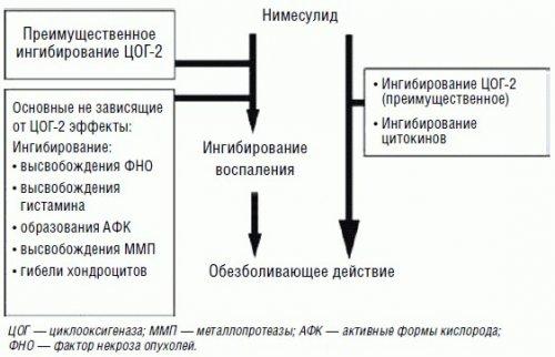 Механизм действия нимесулида