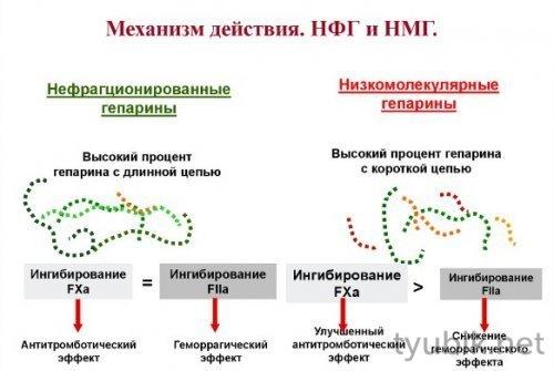 Механизм действия препарата